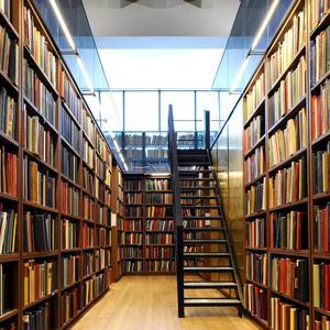 Библиотеки Гатчины
